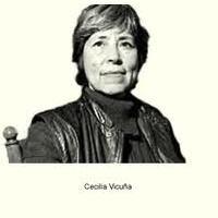 Cecilia Vicuña Ramírez