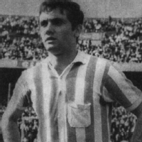 Roberto Perfumo