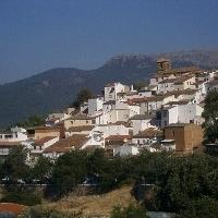 Cotillas (Municipio)