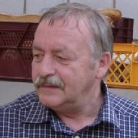 Hans Walter Aust
