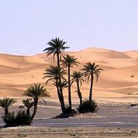 Desierto Victoria