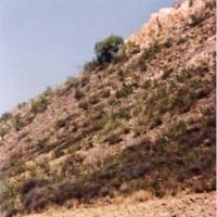 Desierto del Taklamakán
