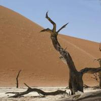 Desierto Kara-Kum