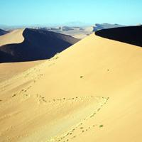 Desierto de Simpson