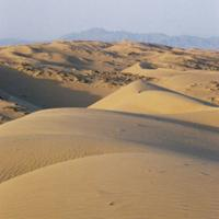 Desierto de Mojave
