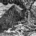 Erupci�n del volc�n Vesubio de 1631