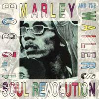 Bob Marley - Soul Revolution