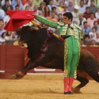 Torero