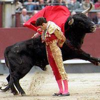 Ranking of History's Best Bullfighters