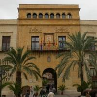 Who do you think is the best candidate for mayor of Elche?