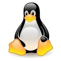 Ranking of the best operating system GNU / Linux