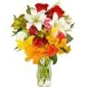 �Cu�l es tu flor preferida?