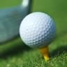 Clasificación de jugadores de golf de la PGA