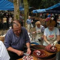 ¿Cuál es la mejor fiesta de la provincia de Ourense?