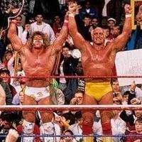 Los mejores luchadores del Wrestling (lucha libre o pressing catch)