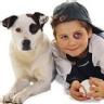 Ranking de los mejores parecidos razonables con mascotas