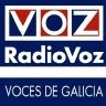 La canción del verano 2013 - RadioVoz