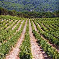 Ranking de las ciudades y pueblos más bonitos de La Rioja