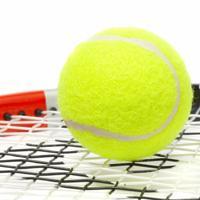¿Cuál es el mejor Grand Slam de tenis?